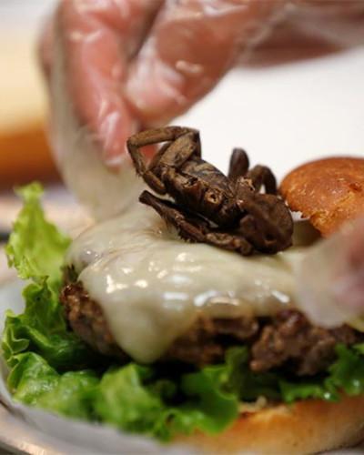 North Carolina restaurant offers customers tarantula burger
