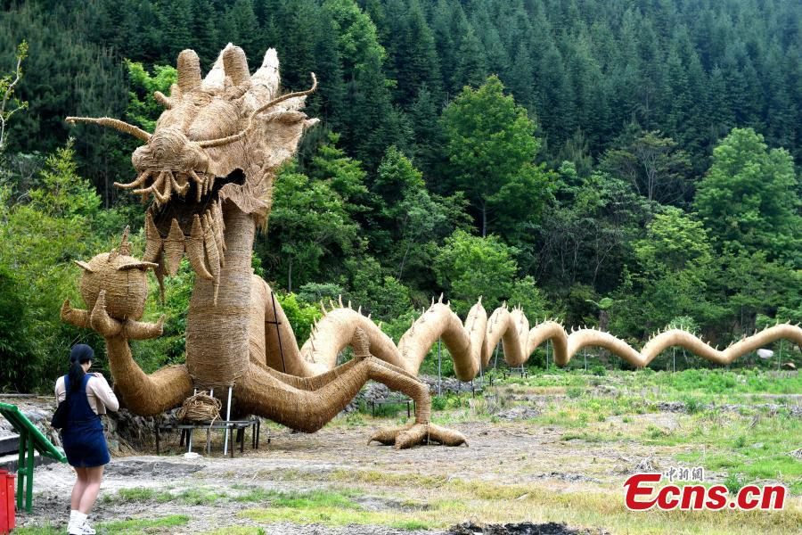 Straw dragon, 150m long, said to be the largest in China