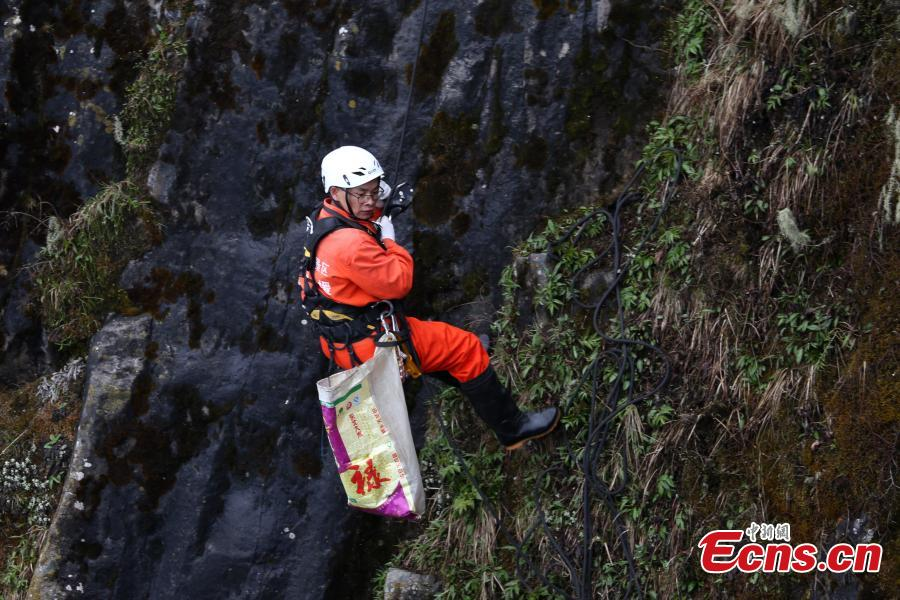 Spiderman-like workers clean Emei Mountains cliff
