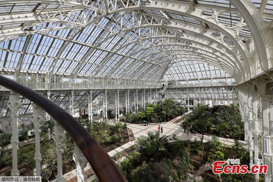World's biggest surviving Victorian glasshouse re-opens in London