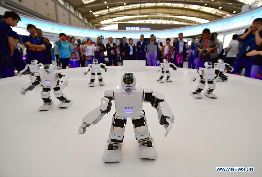 Robots featured at Silk Road expo in China's Xi'an