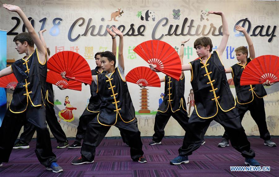 Chinese Culture Day celebrated across world