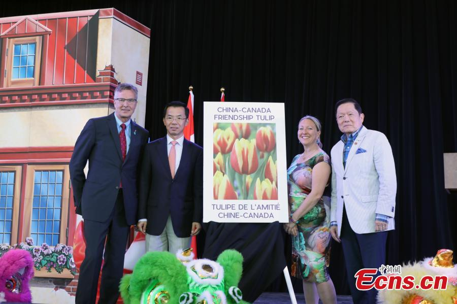 China Day held at Canadian Tulip Festival