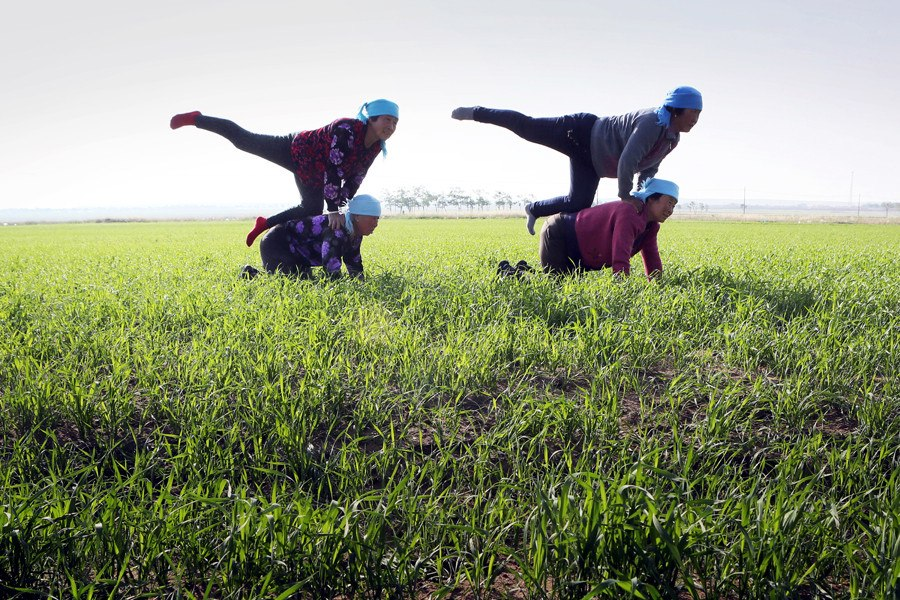 Yoga helps villagers cope with aches, pains