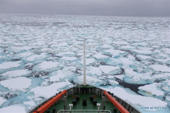 Chinese universities to work together on polar research