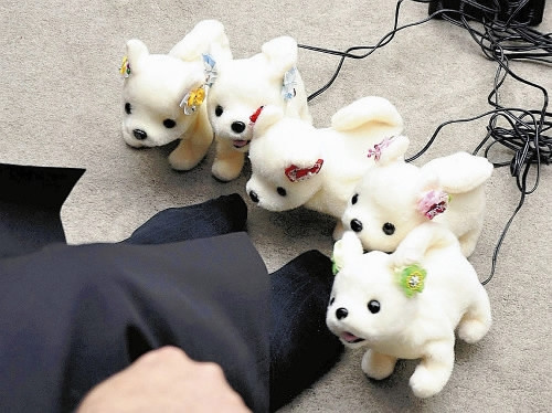 Dog robot developed in Japan to sniff out smelly feet