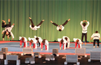 DPRK, ROK stage joint taekwondo performance