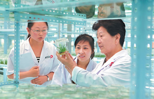 Technicians observe grass growth at a M-Grass' lab in Hohhot, North China's Inner Mongolia autonomous region. (Photo provided to China Daily)
