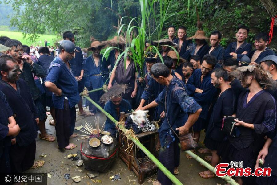 Image result for chinese dog worship festival