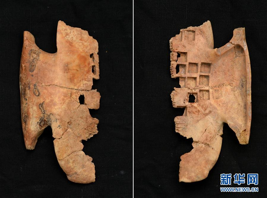 Tortoise shell oracle bones discovered in NW China ancient tomb